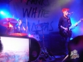 franks white canvas en bar de rene diciembre 2016 (14)-min