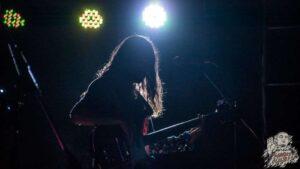 Fosil en idez festival 2015