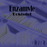 """Enzamvle- """"Rokisdet"""" (2016)"""