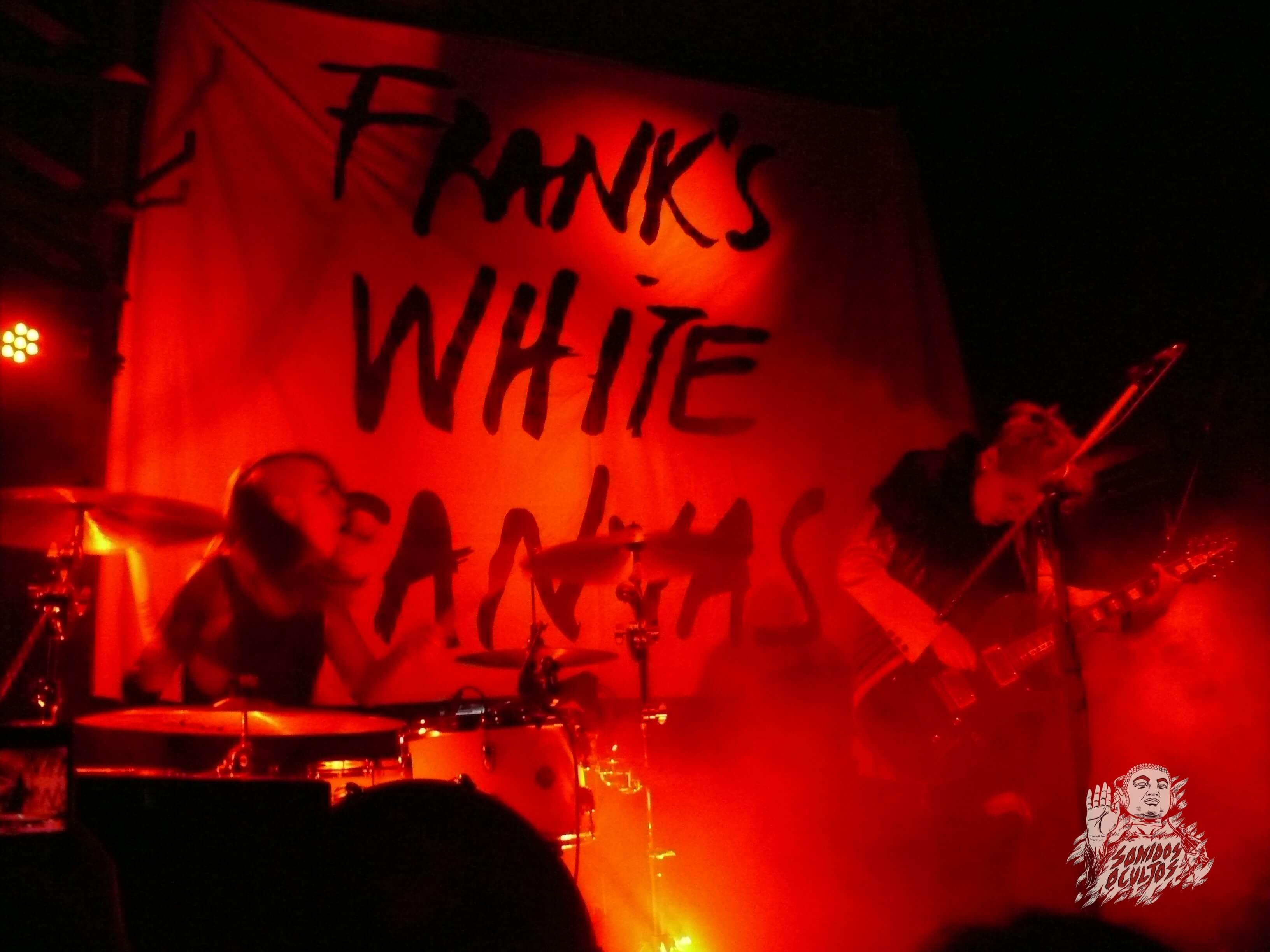 Frank´s White Canvas, se suma a celebración de 21 años de Bar de René